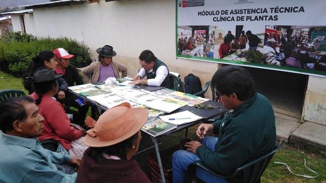 """Ver campaña Módulo """"Clínica de Plantas"""" en Acostambo (27/03/2020)"""