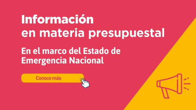 Ver campaña Información presupuestal COVID-19