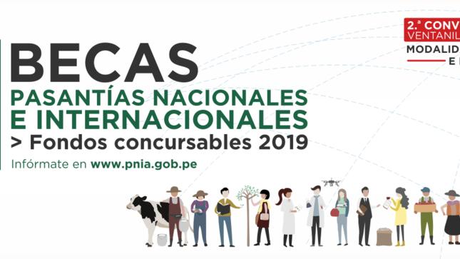 Ver campaña PASANTÍAS NACIONALES E INTERNACIONALES - FONDOS CONCURSABLES 2019
