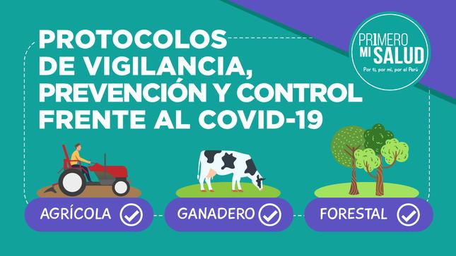 Ver campaña Protocolos de vigilancia, prevención y control frente al covid-19