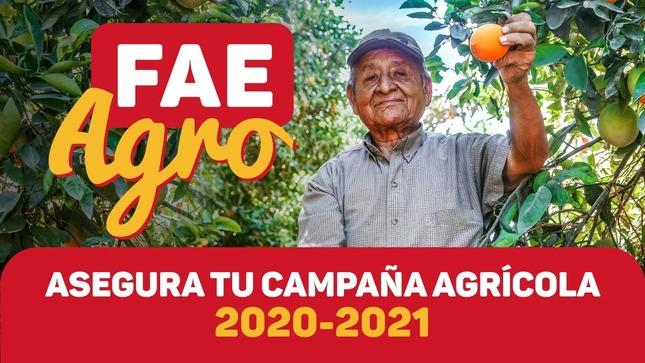 Ver campaña FAE AGRO - Programa de Garantía del Gobierno Nacional para el Financiamiento Agrario Empresarial