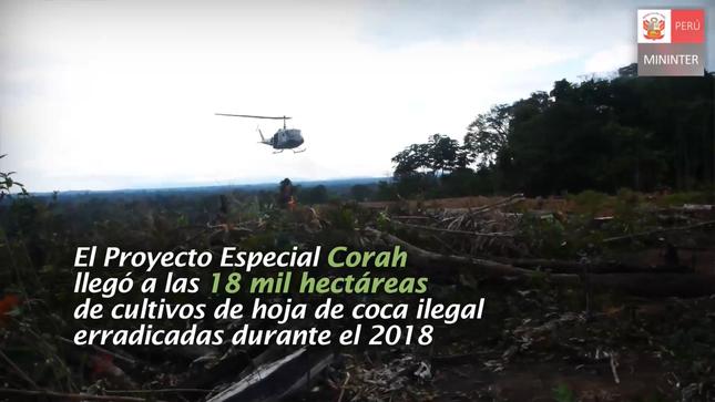 Ver campaña PROYECTO ESPECIAL CORAH LLEGÓ A LAS 18 MIL HECTÁREAS DE COCA ILEGAL ERRADICADA ESTE 2018