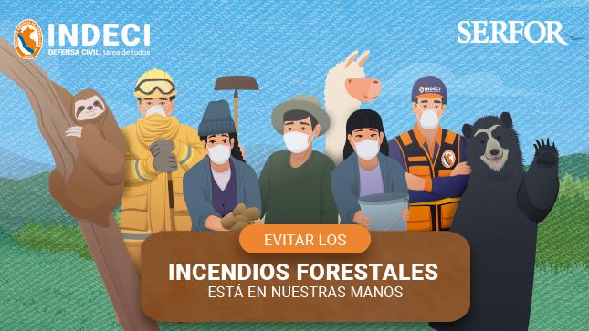 Ver campaña Preparados ante incendios forestales - Evitar los incendios forestales está en nuestras manos
