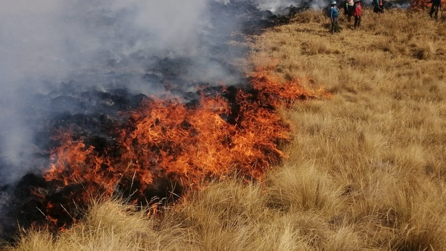 Ver campaña Prevenir un incendio forestal cuesta menos que combatirlo