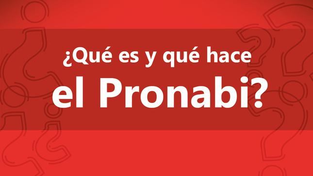 Ver campaña VIDEO: ¿Qué es y qué hace el Pronabi?