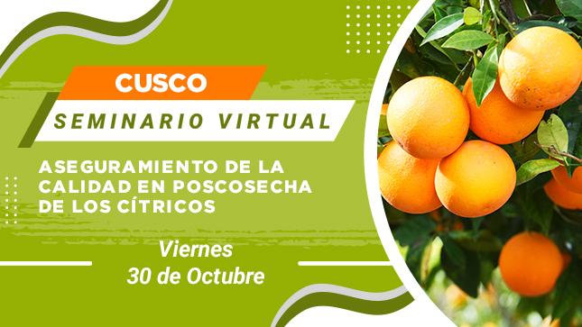 Ver campaña Seminario Virtual: Aspectos Claves en la Gestión Poscosecha de Frutos Cítricos