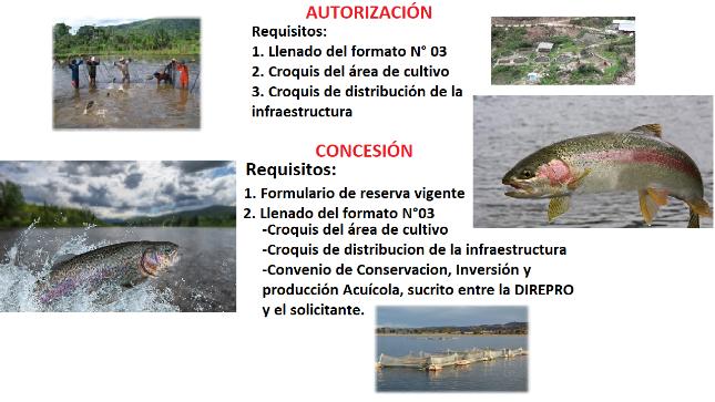 Ver campaña Autorización y concesión de Actividades Acuícolas