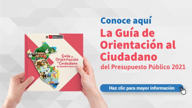 Ver campaña Guía de Orientación al Ciudadano del Presupuesto Público 2021