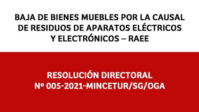 """Baja de Bienes Muebles por la Causal de """"Residuos de Aparatos Eléctricos y Electrónicos – RAEE"""""""
