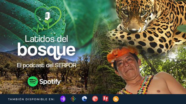 Ver campaña Podcast del SERFOR: Latidos del bosque