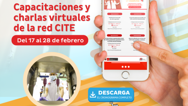 Ver campaña Capacitaciones y charlas virtuales de la red CITE del 17 al 28 de febrero 2021