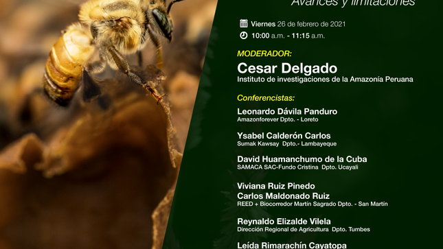 """Ver campaña Ciclo de conferencias """"Conservación y manejo de abejas nativas sin aguijón en el Perú""""."""