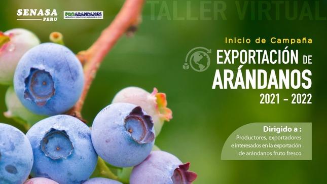 Campaña de exportación de arándanos 2021-2022