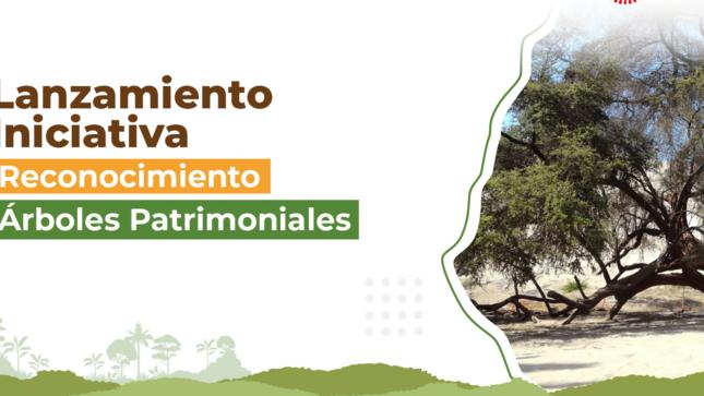 Ver campaña Árboles Patrimoniales