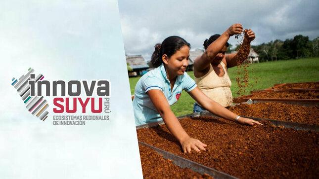InnovaSuyu: Ecosistemas Regionales de Innovación