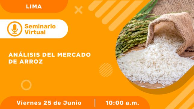 Análisis del mercado de arroz