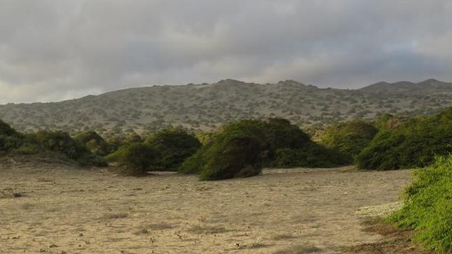 Proceso de categorización de la Zona Reservada Illescas