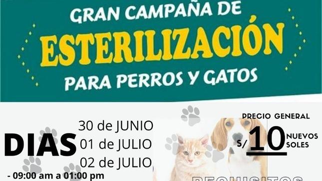Campaña de esterilización y desparasitación de CANES
