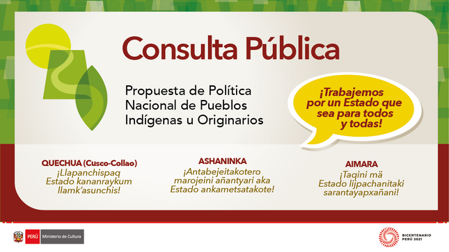 Consulta pública de la propuesta de PNPI