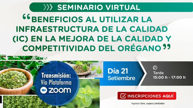 Seminario virtual