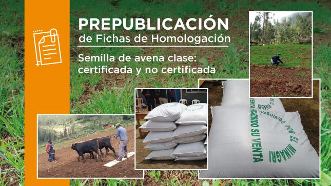 Prepublicación - Fichas de Homologación