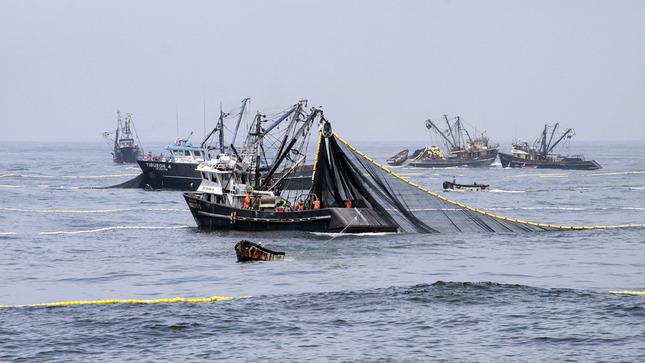 Produce: Pesca de anchoveta registra avance de 91.92% de cuota asignada para la primera temporada 2020