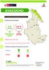 Ver informe Cobertura y Perdida de Bosques de Ayacucho