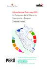 Vista preliminar de documento Informe Nacional del Perú 2020: la protección de la Vida en la Emergencia y después