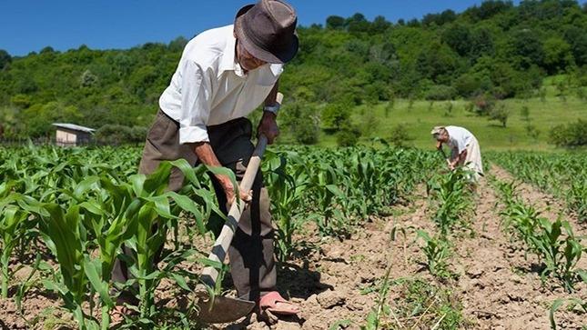 EL SENAMHI OFRECE INFORMACIÓN DE RIESGO AGROCLIMÁTICO PARA EL INICIO DE  LA CAMPAÑA AGRÍCOLA 2020-2021