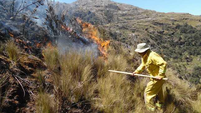 Guardaparques bomberos forestales trabajan para extinguir incendios forestales en el Parque Nacional Huascarán