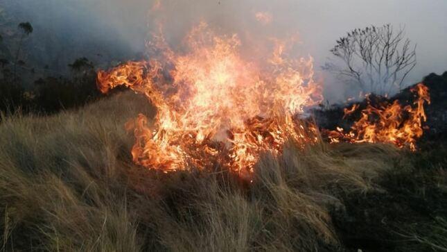Incendios forestales: un problema recurrente