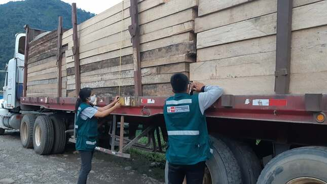 85m3 of lumber seized in San Gabán