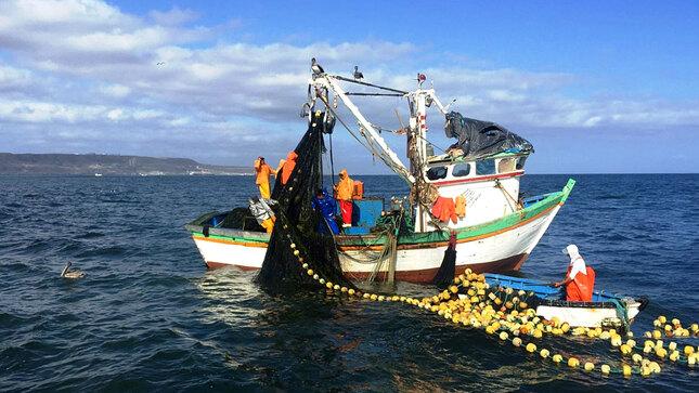 Socios de las cooperativas pesqueras podrán adecuar sus permisos a lo dipuesto por la Ley General de Pesca