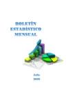 Vista preliminar de documento Boletín Estadístico - Julio 2020