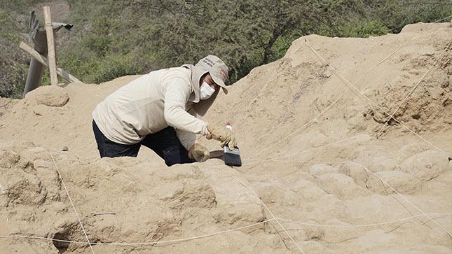 Se  inician proyectos de investigación arqueológica con estrictas medidas de bioseguridad