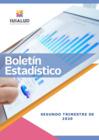 Vista preliminar de documento Boletín Estadístico Trimestral 2020