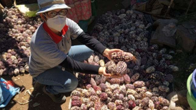 Haku Wiñay express: el innovador plan para las familias rurales afectadas por el covid-19