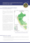 Vista preliminar de documento Pronóstico Agrometeorológico para el Cultivo de Café - Década del 01/09/2020 al 10/09/2020
