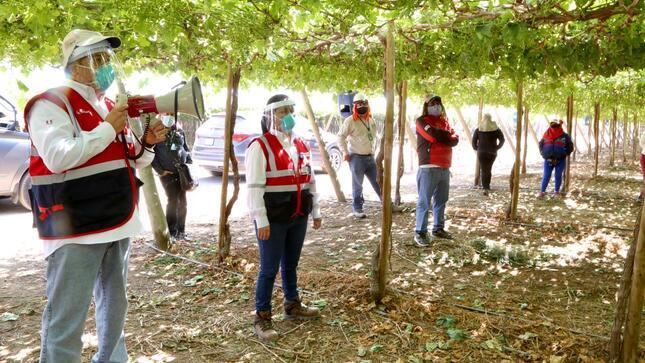 Más de 700 denuncias de trabajadores de Ica viene atendiendo la SUNAFIL desde el inicio del estado de emergencia sanitaria