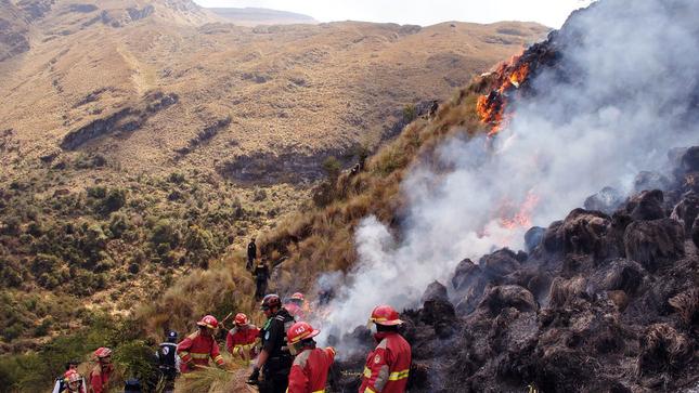 Organización internacional aprueba proyecto del SERFOR para conservar ecosistemas frente a los incendios forestales