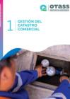 Vista preliminar de documento Manuales de gestión comercial