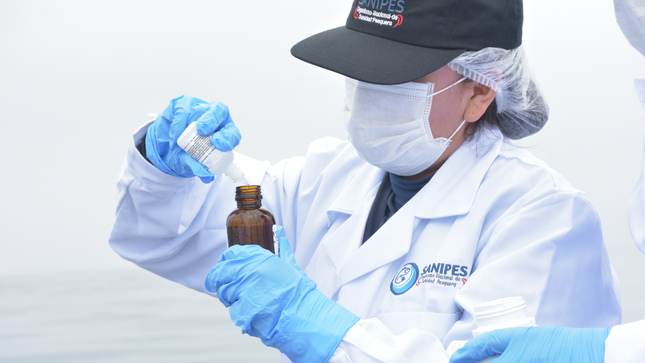 Sanipes realizará monitoreo sanitario en 28 Desembarcaderos Pesqueros Artesanales
