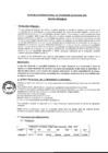 Vista preliminar de documento Plan de Acción Regional de Seguridad Ciudadana 2020 Región Amazonas