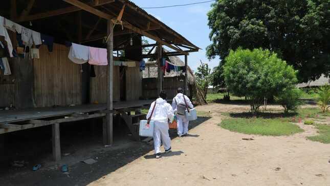 Loreto: Brigadas del Minsa realizan vacunación casa por casa en Contamana