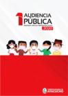 Vista preliminar de documento Audiencias Públicas 2020