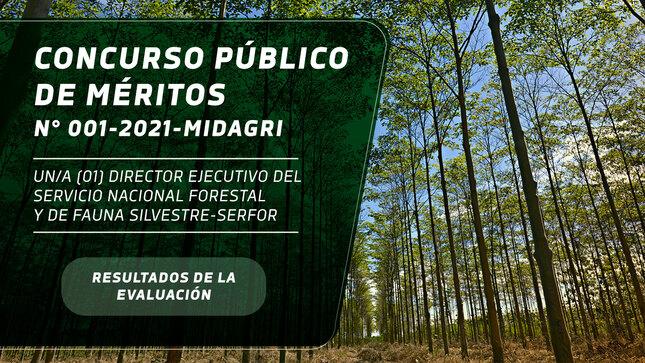 Concurso Público de Méritos N° 001-2021-MIDAGRI- Resultado Final del Proceso de Selección