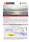 Vista preliminar de documento Boletín Diario Oceanográfico (25-01-2021)