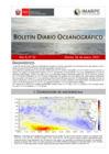 Vista preliminar de documento Boletín Diario Oceanográfico (26-01-2021)
