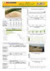 Vista preliminar de documento Boletín de abastecimiento y precio del  ARROZ - Febrero 2021