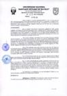 Vista preliminar de documento Plan Operativo Institucional 2021 de la UNASAM